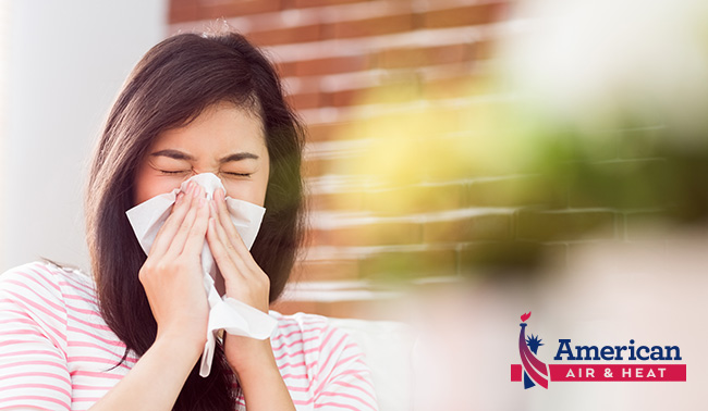 how to reduce home allergens
